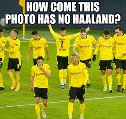 This photo memes